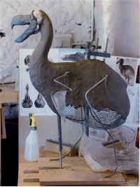 Dodo Armature by Reconstruction: Dodo