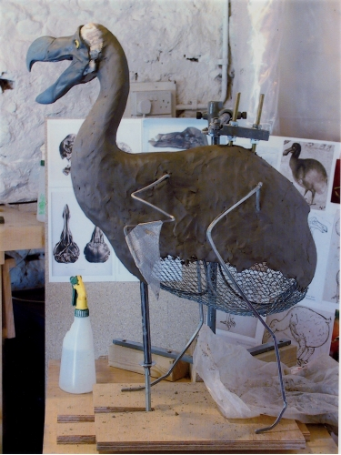 Reconstruction: Dodo