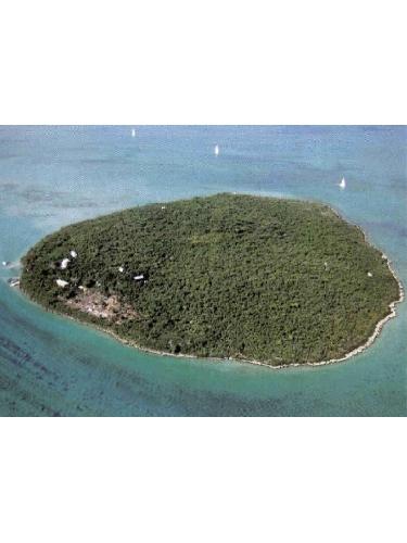 The Island Ile aux Aigrettes